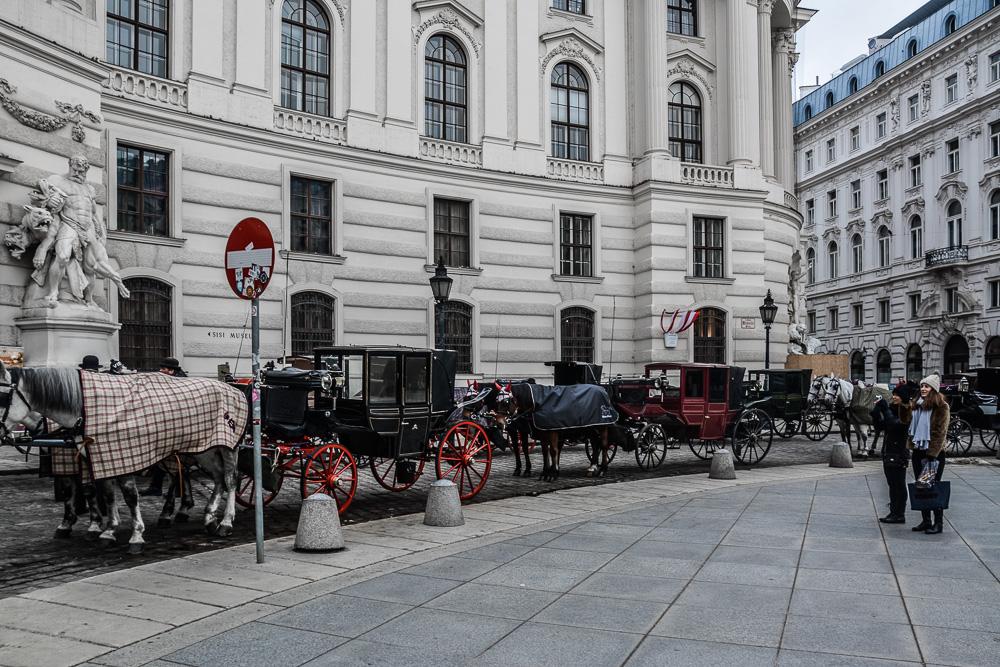 Vienna-Sightseeing-Bezirk (2)