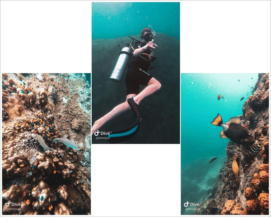 Unterwasser Aufnahmen vom Tauchen auf Koh Tao mit GoPro Hero 7 black